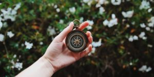 haptotherapie kompas ontwikkeling